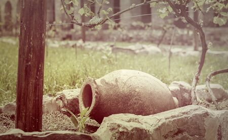 earthen vessel for storing wine in the vineyard Stock Photo