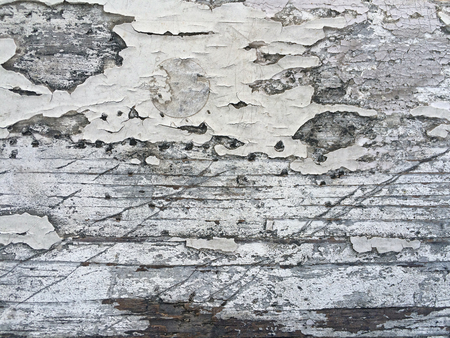 old worn wooden background with cracked white paint