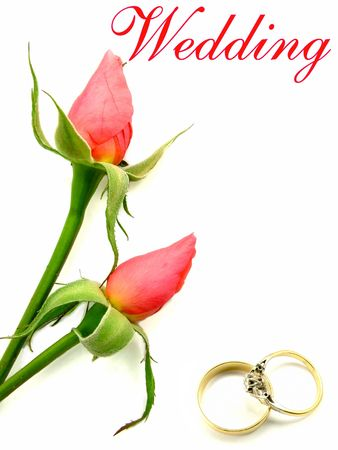Wedding wording over two pink roses with gold husband and wife diamond engagement rings. Stock Photo