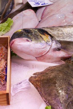 sparus: Gilthead sea bream (Sparus aurata) and Fresh turbot (Psetta maxima)