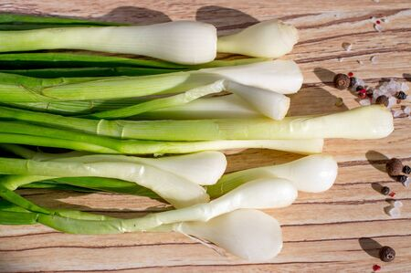 Fresh shallot onion, scallions with pepper and salt Stock Photo