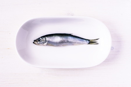 sprat: Sprat in the plate top view Stock Photo
