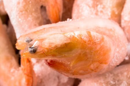 solidified: Couple of frozen shrimp solidified in ice closeup