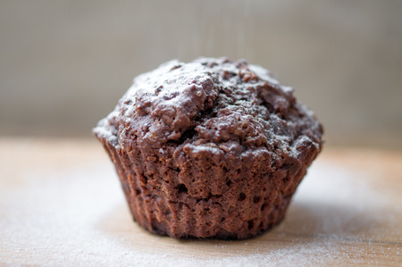 powdered: Chocolate muffins sprinkled with powdered sugar. Selective focus