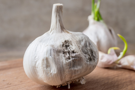 rotting: Improper storage of garlic leads to rotting
