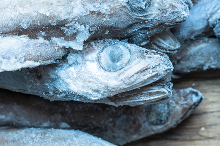 fish head: Frosted bunch tilapia fish head