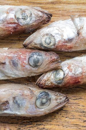 fish head: Frozen fish head vertically top view
