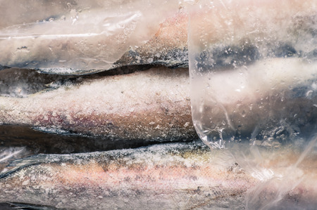 carcasses: Carcasses frozen fish pollock in the plastic packaging