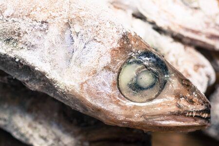 thawed: Thawed frozen fish head closeup