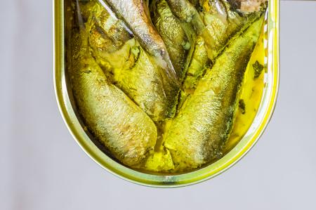 sardinas: Aceite en una lata de sardinas vista superior