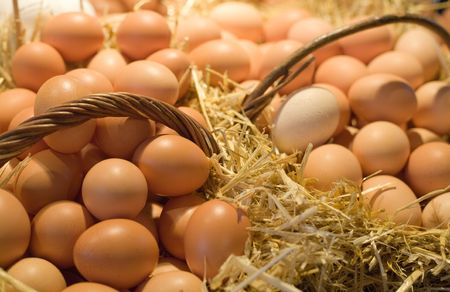 poultry animals: Tiled eggs in straw baskets on market stall.