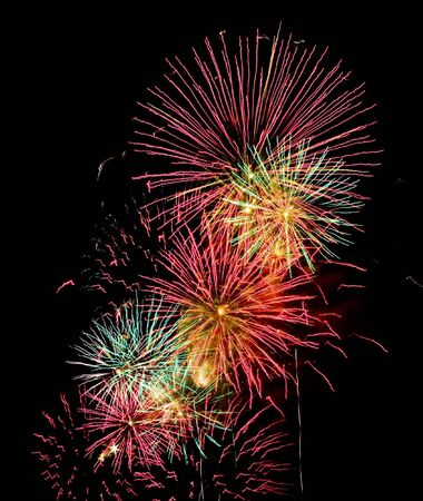 Burst of fireworks in the sky at night Stock Photo - 5643090