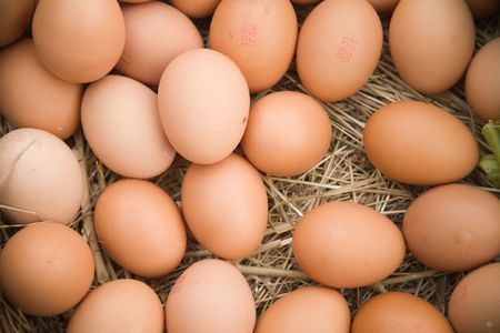 Fresh eggs arranged in a straw barn setting. photo