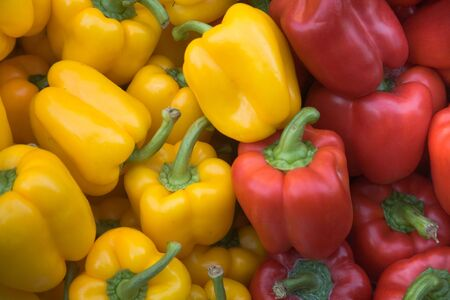 pimiento: A pile of organic red and yellow pepper vegetables at a farmers market.