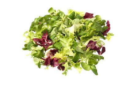 escarole: Escarole, radicchio and corn salada isolated against a white background.