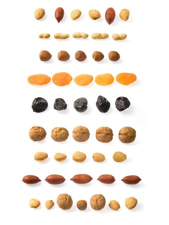 Lines of peanuts, hazelnuts, dried apricots, prunes, walnuts, almonds and pecans over white.