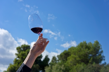 Hand raising a glass of wine to toast