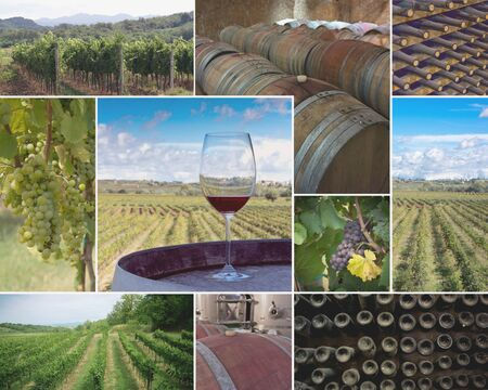 Colorful collage of  vineyards and wineries images photo