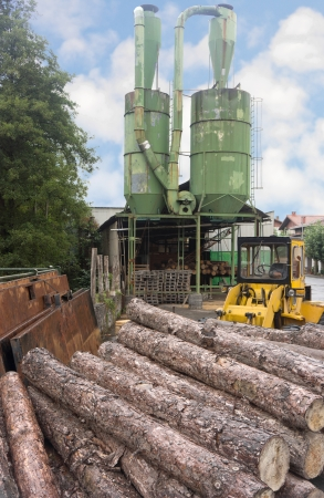 lumber mill: Pile of logs in front of a lumber mill