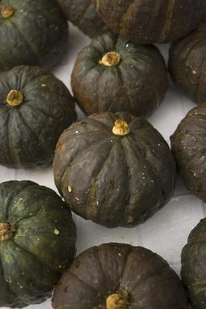 Dark green pumpkins