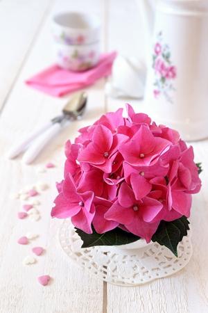 refinement: Drinking tea with pink flower hydrangea Stock Photo