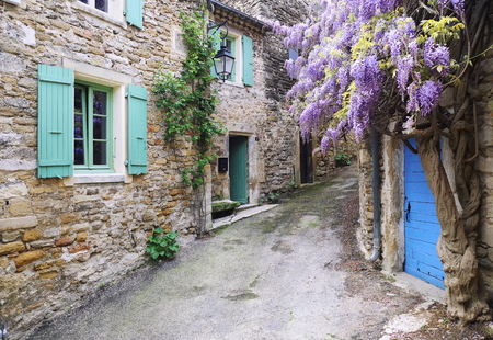 Village of Provence: flowering purple wisteria vine