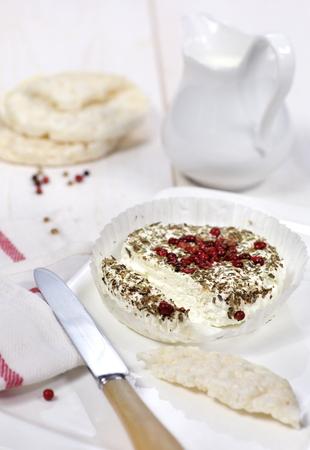 queso de cabra: Queso tradicional francesa de cabra, leche de arroz y pan crujiente. Enfoque selectivo