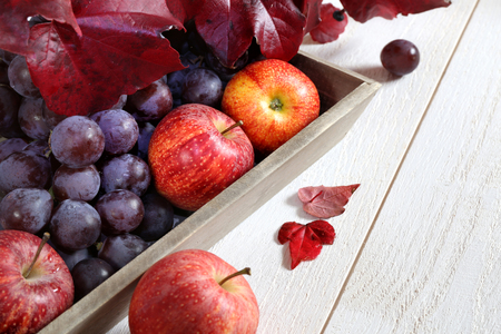 live vitamins: red grapes, maroon autumn leaves and red apples on a gray tray