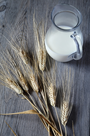 lactic: Jug of cold  milk and bred grains Stock Photo