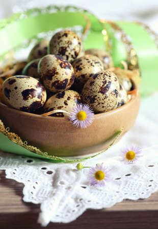 huevos de codorniz: huevos de codorniz y la decoración de Pascua. Foto de archivo