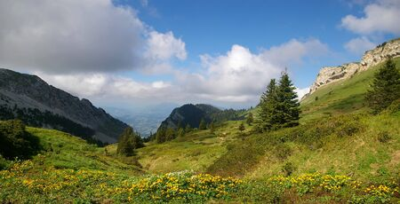chartreuse: Alpine foothills: spring, Chartreuse mountain range. Panorama