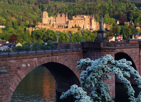 Germany. The ruins of the Heidelberg Castle at sunset Stock Photo