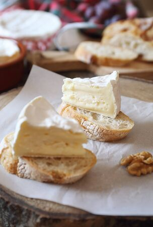 French dessert. Two slices of Camembert cheese on bread. Focus selective