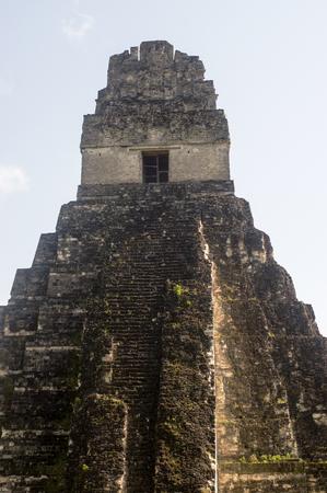 Tikal (Guatemala) temple 1 in the Jungle