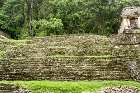 Ruins in the jungle of Palenque, an ancient maya city in Mexico Banque d'images