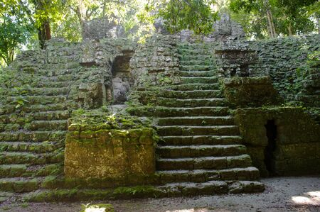 Ruins of ancient maya buildings in the jungle of Tikel, Guatemala