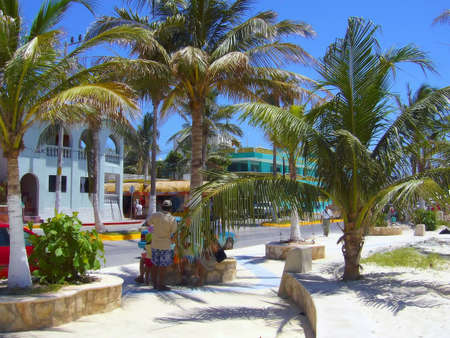 Family takes rest under palms on a street. Shot in Cancun, Mexico: photo