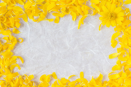 yellow gerbera isolated on: Yellow flower petals The frame is made with flowers Stock Photo
