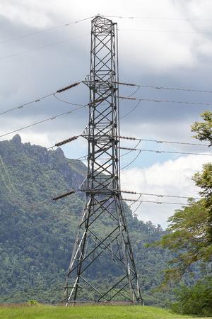 telephone pole: Telephone pole on natural background