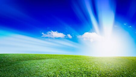 grassland: open grassland and sky landscape. field of grass outdoor. Natural background. The concentration of color.