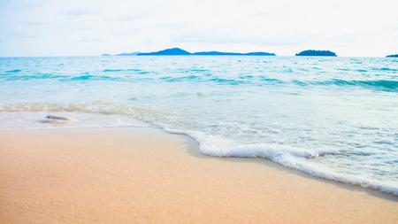 Beautiful sea in summer