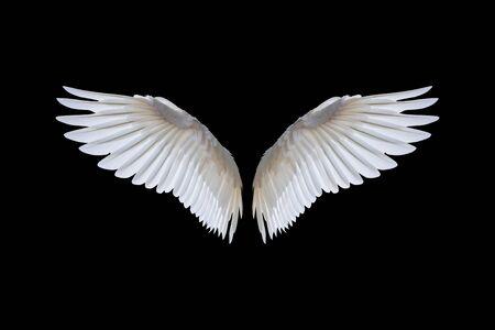 Ailes d'ange blanches isolées sur un fond noir