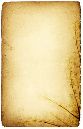 ornated: Grunge stagionali arrugginito carta floreale ornato con un ramo di fiori Archivio Fotografico