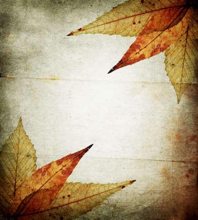 ornated: Autunno astratto carta sfondo ornato con foglie e con la luce posto al centro. Grunge bella immagine a colori