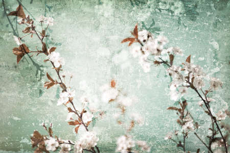 Grunge floral scratched textured background with flowers blossom Reklamní fotografie