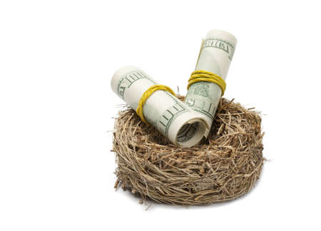 incubate: Money rolls in nest  Design element on white  Hatched wealth concept  Low aperture shot, focus on money