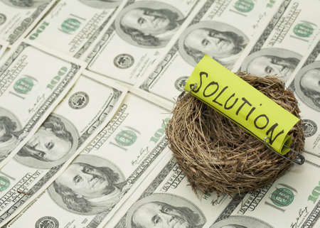 incubate: Business concept  Nest with solution word on money background  Focus on nest