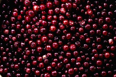 black berry: image of fresh raw wild red and black berry Stock Photo