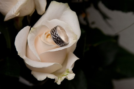 side lighting: rings on the leaves of white roses with a nice side lighting Stock Photo