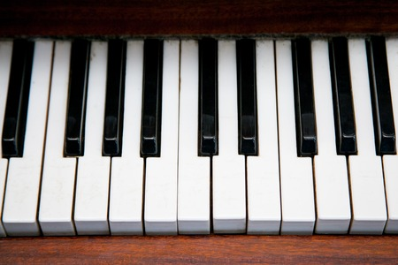melodic: black and white piano keys side by side